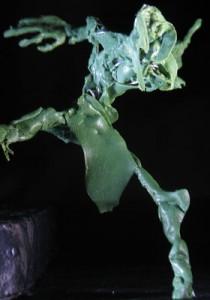 greenstuff_14