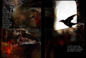 KF8_12_2 Raven